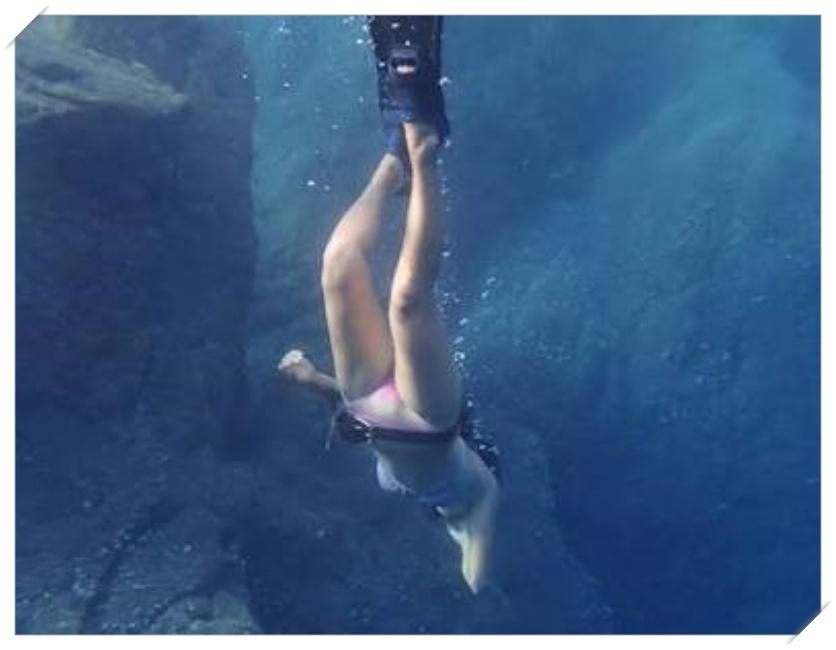 人類の進化?潜り続けて海洋生物に進化するって本当?