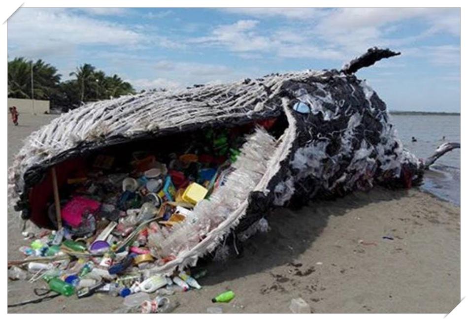 負の世界遺産・太平洋ゴミベルトの位置は?原因と対策は?