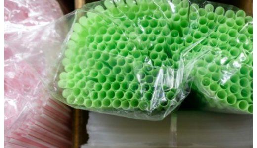 世界中で始まったプラスチックゴミ規制運動!日本も乗り遅れるな!